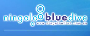 Ningaloo Blue Dive - Accommodation Australia