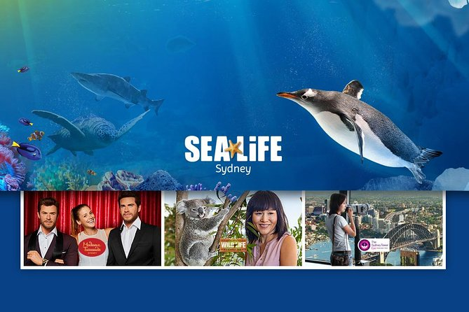 Sydney Attractions Pass: SEA LIFE Aquarium, Sydney Tower Eye, WILD LIFE Zoo and Madame Tussauds