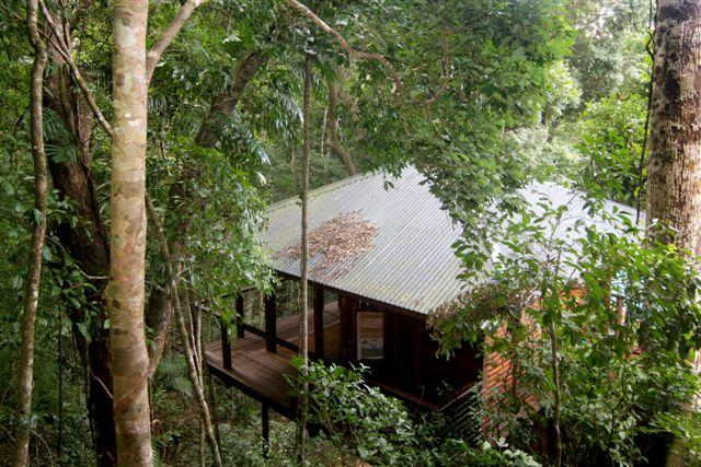 Cairns Reef & Rainforest B&B